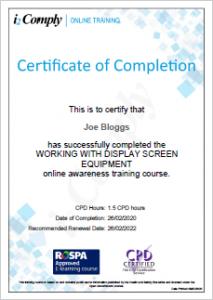 Display Screen Equipment Certificate Example