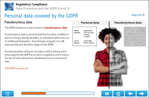 Data Protection and the GDPR (Level 2) Online Training Screenshot 2