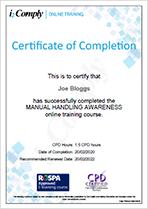 Manual Handling Certificate Example